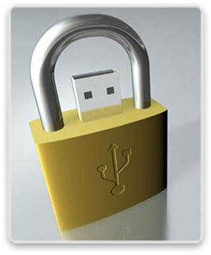 dsi-usb-lock